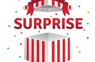 Boite cadeau surprise surprise 3446 340